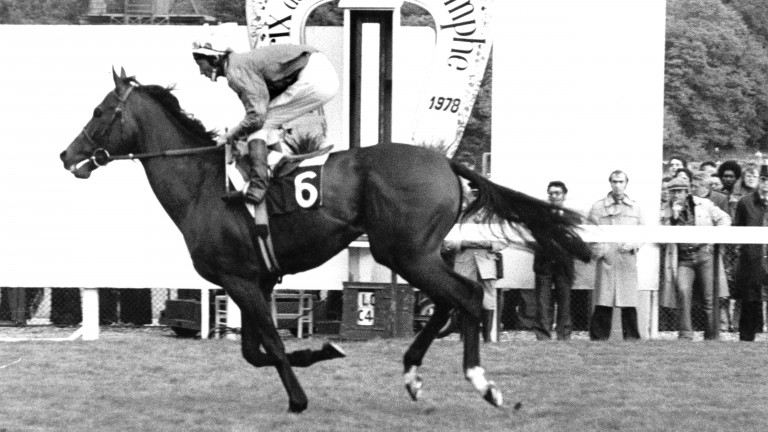 Alleged wins the Prix de l'Arc de Triomphe in 1978 for the second time