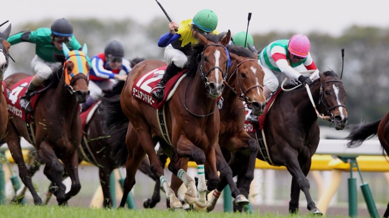 Denim And Ruby (green cap): the Group 1 performer is a rare example of a high-class mare racing on in her seventh year