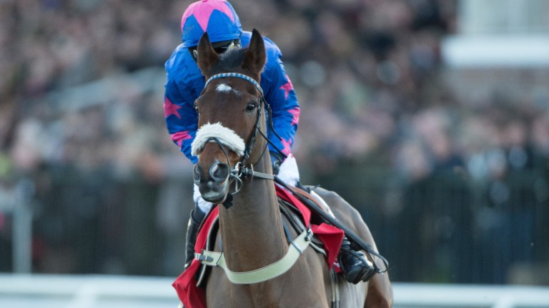 Cue Card and Paddy Brennan:  back for second Betair Ascot Chase after a four-year gap