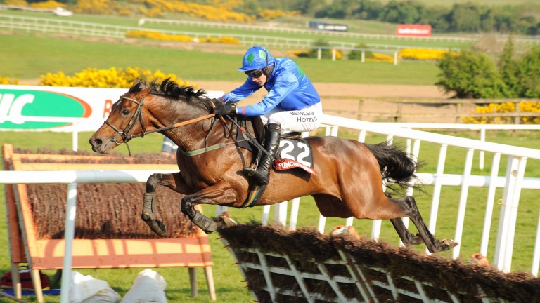 Hurricane Fly: was trained by Willie Mullins to win 22 Grade 1s