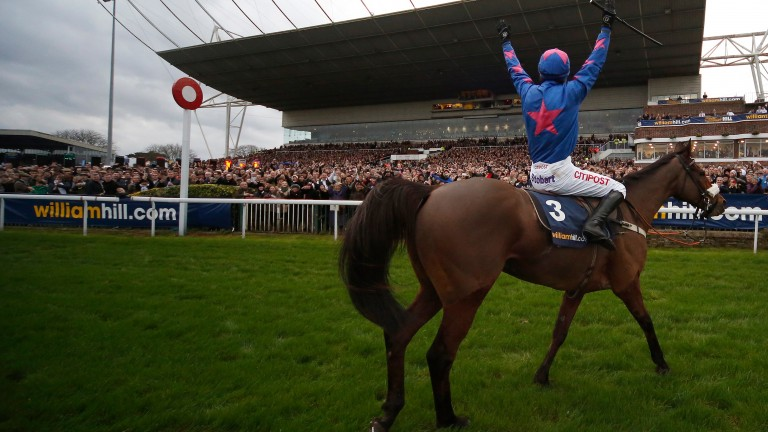 SUNBURY, ENGLAND - DECEMBER  26:  Paddy Brennan riding Cue Card celebrate winning The William Hill King George VI Steeple Chase at Kempton Park racecourse on December 26, 2015 in Sunbury, England. (Photo by Alan Crowhurst/Getty Images)