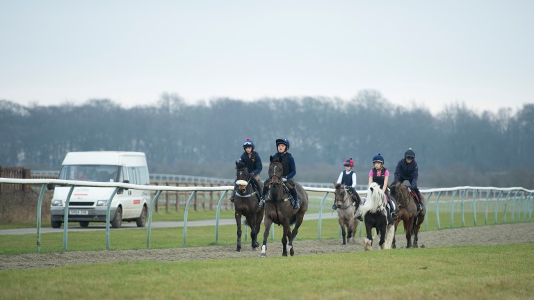 Students doing the level 3 qualifying pony racing training day on the gallops