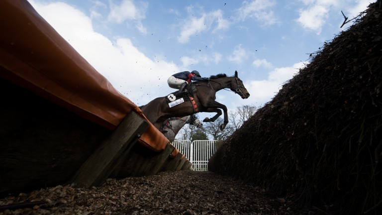 Making a shape: Reynoldstown winner Bigbadjohn arches his back to clear the big open ditch