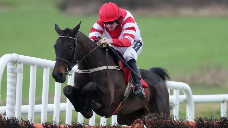 Dandy Mag clears the last to make a winning start to his Irish career