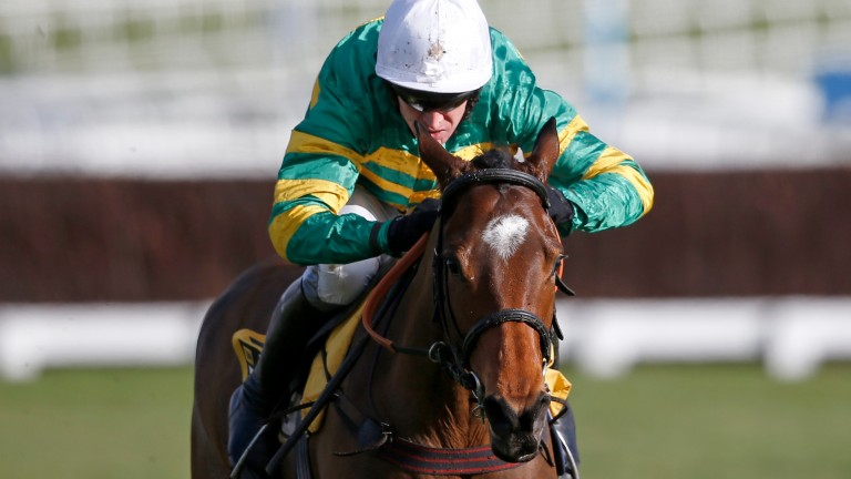 Defi Du Seuil: Philip Hobbs-trained juvenile leads the market for the Triumph