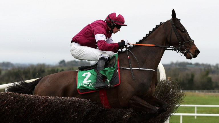 Tidy leap: Ball D'Arc clears the final fence on the way to victory in the Grade 3 Flyingbolt Novice Chase under Bryan Cooper