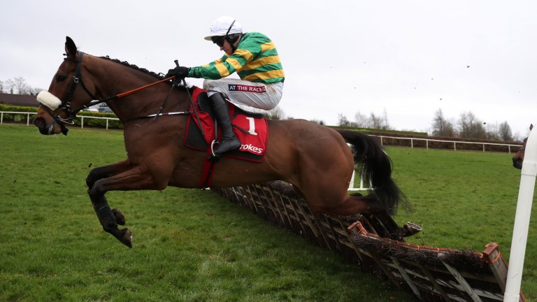 Ready for landing: Sutton Place and Barry Geraghty attack an obstacle in the Boyne Hurdle
