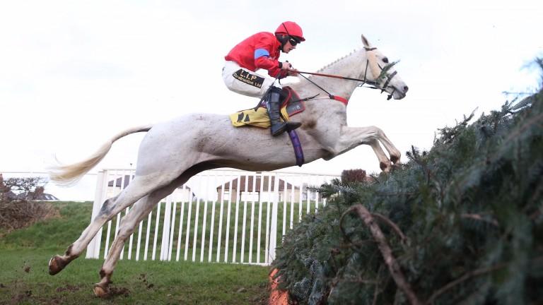 Carrigdhoun: last year's winner has won on each of his last three visits to Carlisle