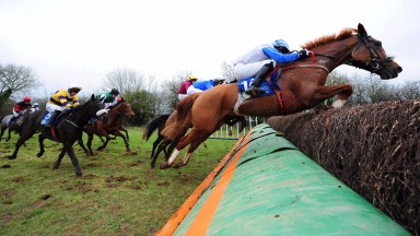 Kildorrery PTP 19-2-17 MOMELLA & Pat Collins jump the last to win the 5&6-Y-O Mares Maiden Race for trainer Marie Harding.(Photo HEALY RACING)