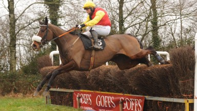 B L Swagger shows his style under a fine Rob James ride in the open lightweight
