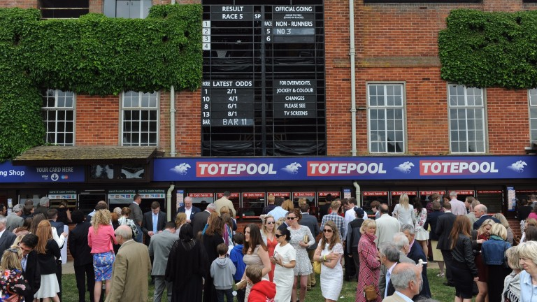 Britain's racecourses are setting up their own rival to the Tote