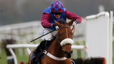 La Bague Au Roi has the scope to make her mark in mares' chases