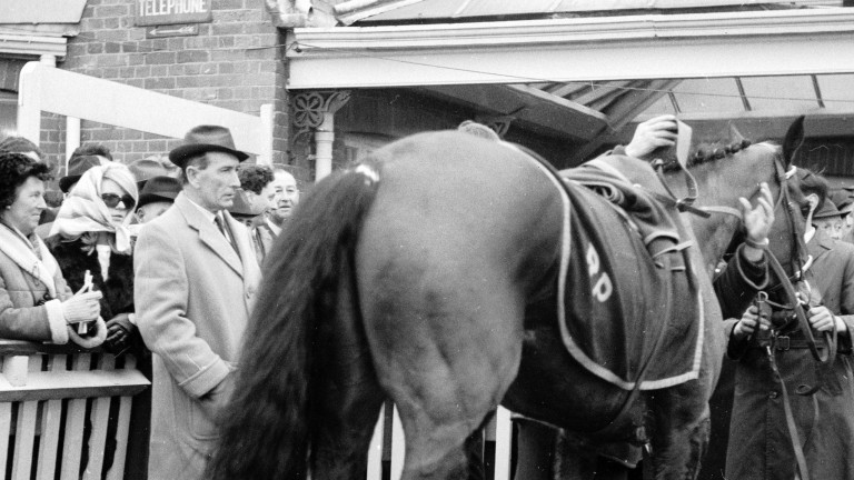 Ryan Price inspects Hill House after the horse had romped home in the 1967 Schweppes Gold Trophy, provoking a huge controversy