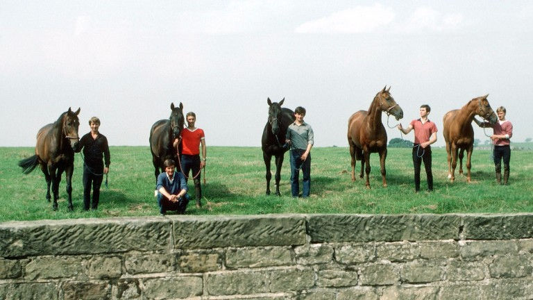 The Famous Five: Michael Dickinson with his 1983 Gold Cup team (from left): Bregawn, Captain John, Wayward Lad, Silver Buck and Ashley House