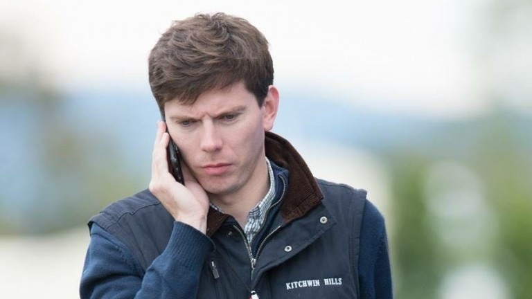 Tom Pennington spent four years as assistant bloodstock editor at the Racing Post