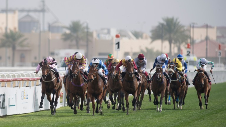 Mr Scaramanga (Adrie de Vries, 3rd left) wins the Al Biddah