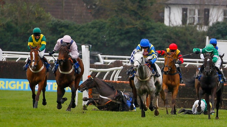 Master Blueyes (the grey): would surely still have won even if favourite Charli Parcs hadn't come down at the last