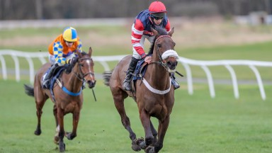 The  Nipper and Gaven Sheehan breeze clear won win the mares' novice hurdle