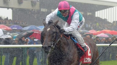 Convey, pictured at Haydock in September when owned by Khalid Abdullah, swooped late to late the Winter Derby for Robert Ng