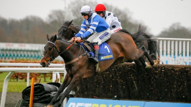 Frodon: sixth chase win in the Pendil