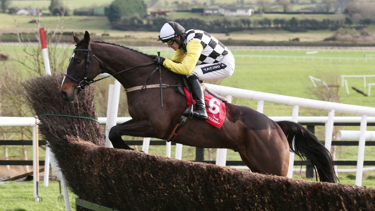 Pleasant Company: led home a one-two for his sire in the Grade 3 Bobbyjo Chase at Fairyhouse