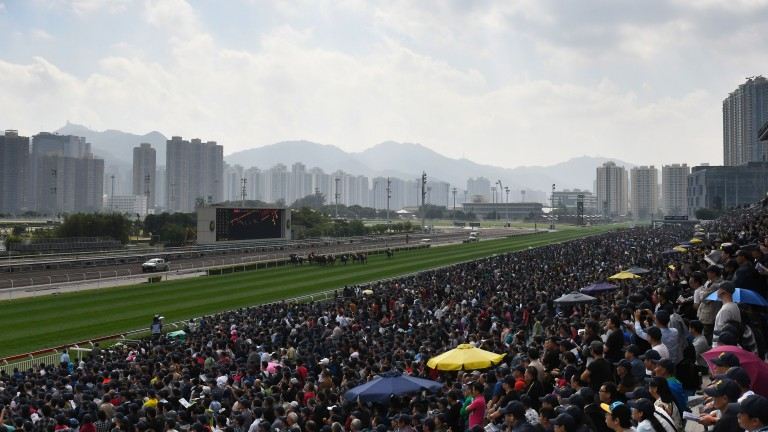 Helene Paragon struck for the second time in a Group 1 at Sha Tin