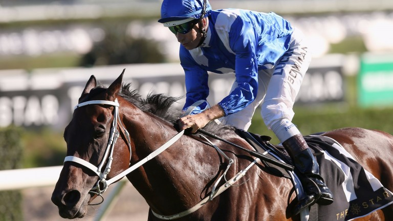 Winx is on course with his record-equalling bid for a third Cox Plate