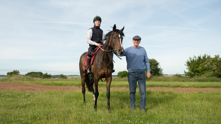 Harlequeen: four-year-old daughter of Canford Cliffs was bred by Richard Moses