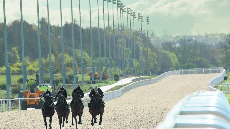 Newcastle: hosts a valuable card on the all-weather on Friday