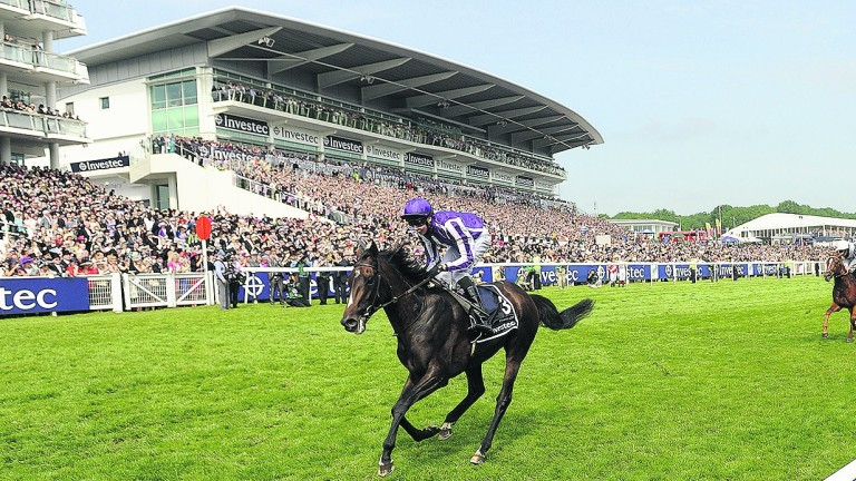 Camelot: retired to stud in 2014 at a fee of €25,000