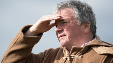 Nigel Twiston-Davies watches his string exercise up the hill gallop at Grange Hill Farm on Thursday above the picturesque village of Naunton, Gloucestershire
