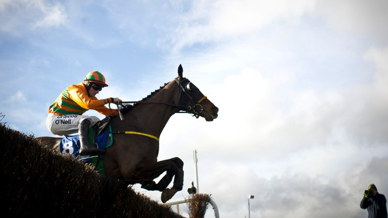 Grade 2 Kinloch Brae Chase winner Texas Jack, the best performer so far for Curtain Time