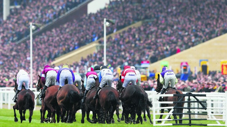 Cheltenham: useful info out there underneath the guff, waffle and profiteering
