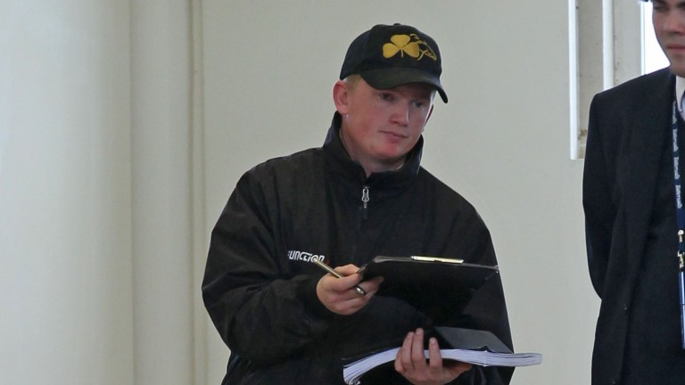 Ryan Mahon signs for a lot at the Tattersalls Autumn Horses in Training Sale