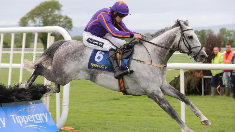 Diakali returns at Leopardstown after a long absence