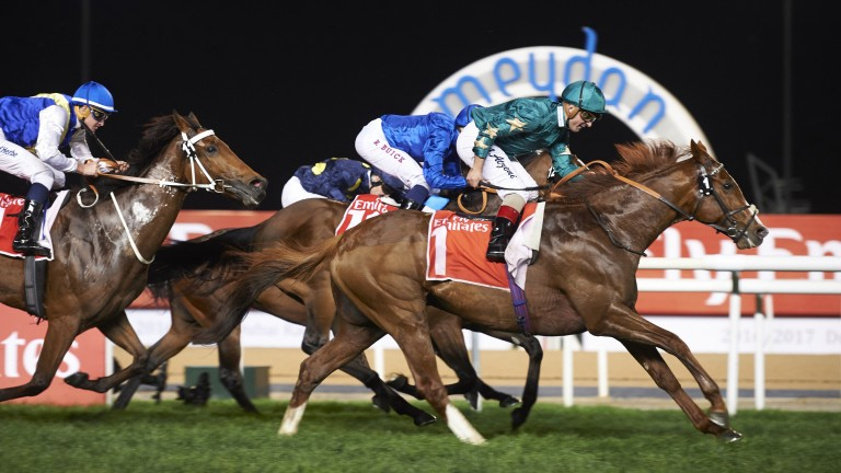 Decorated Knight just gets up to beat Folkeswood, Muffri'Ha (far side) and Shanshaawes in the Group 1 Jebel Hatta at Meydan