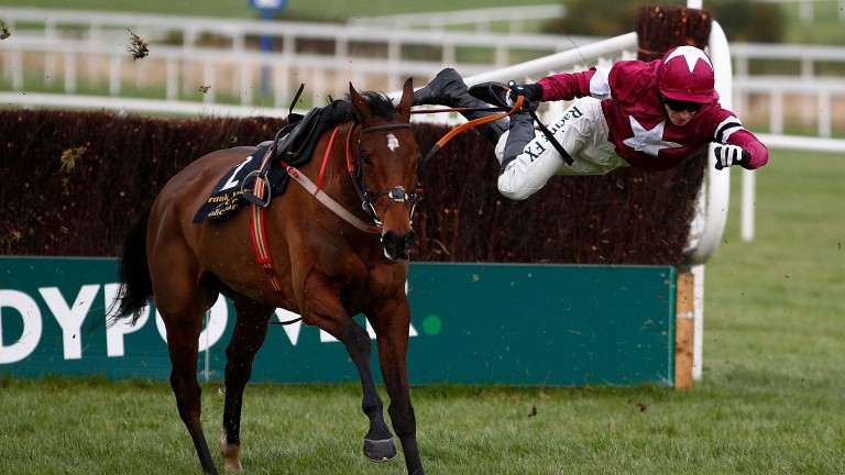 Identity Thief: back in action at Leopardstown on Sunday
