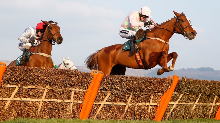 Limini: Willie Mullins' high-class mare is out of a half-sister to the 2003 Irish Oaks winner Vintage Tipple