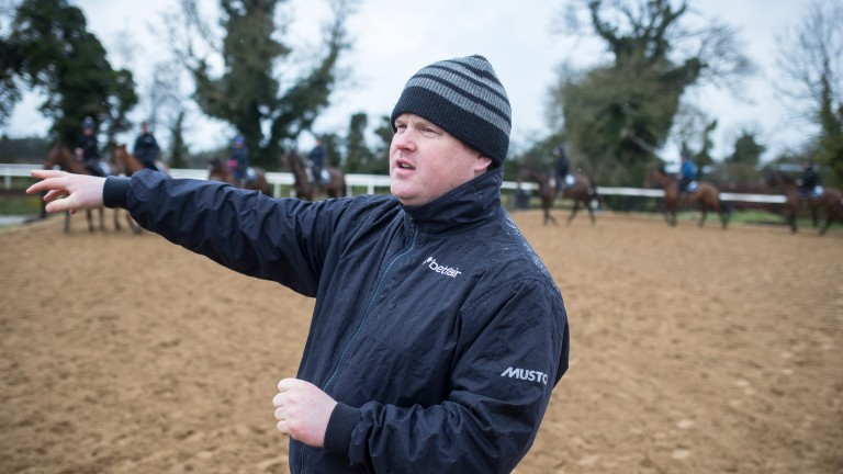 Gordon Elliott: is now 1-4 to win the Irish jumps trainers' championship