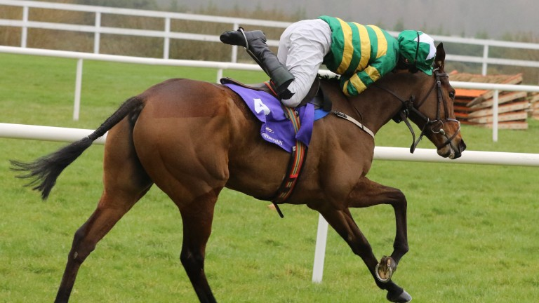 Jody McGarvey somehow manages to stay on Great Field to secure victory at Leopardstown