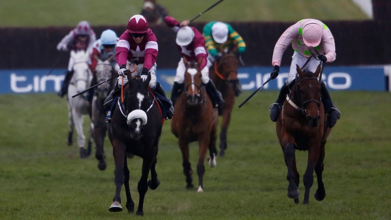 Don Cossack powers up the hill to win the 2016 Timico Gold Cup