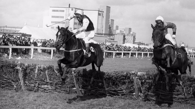 Night Nurse (right) and Monksfield clear the last in the Templegate Hurdle before dead-heating , with Night Nurse conceding 6lb