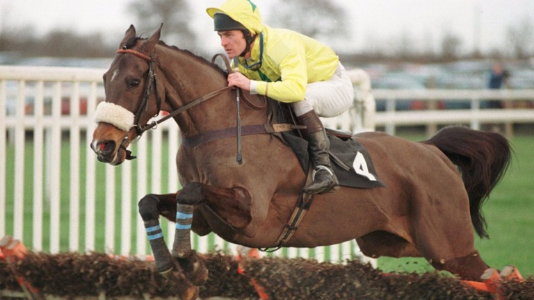 Dato Star: historic winner of the Champion Bumper before proving a northern star over hurdles