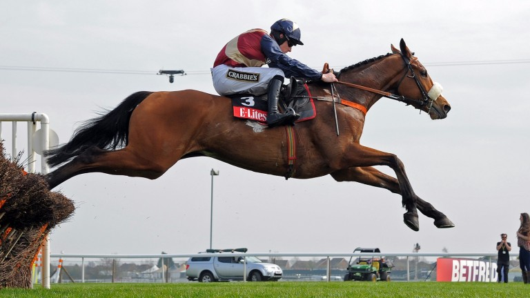 Cyrus Darius: bids for a second win in the Morebattle Hurdle at Kelso