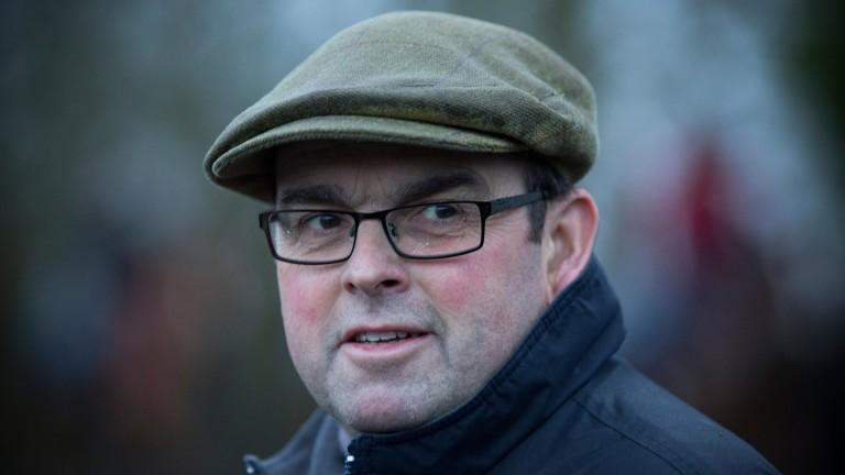 Alan King: on hand to help celebrate the Duke's first Cheltenham winner