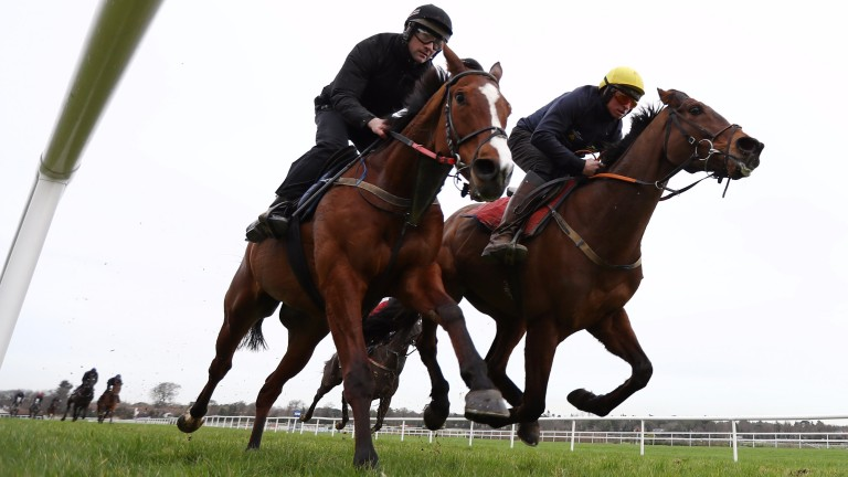 Cause Of Causes (Jamie Codd, right) works at Leopardstown