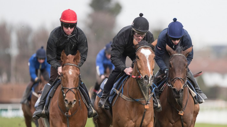 The Storyteller (Donagh Meyler, left), Don Poli (Brian O'Connell, centre) and Shattered Love (Brian Cooper) go throught their paces on the exercise morning