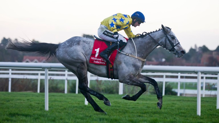 Carter McKay: is currently favourite for the Champion Bumper at the Cheltenham Festival