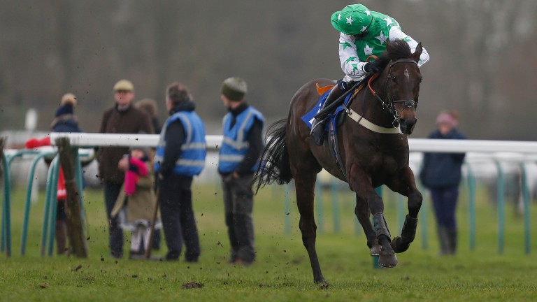Camping Ground (Josh Moore) romps home in the National Spirit Hurdle at Fontwell but will not be supplemented for the Champion Hurdle