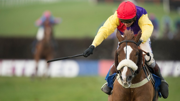 Native River: son of Indian River has won the Hennessy and Welsh National this season